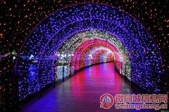 徐州潘安湖湿地公园萤火虫之夜梦幻灯光秀
